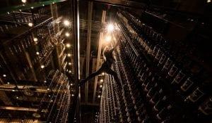 Cibo South Beach Modern Metal Wine Rack and Cellar